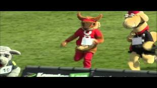 Loopwedstrijd voor mascottes