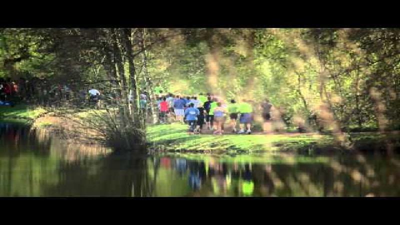 Dwars door Dendermonde lokt 2.700 enthousiaste lopers