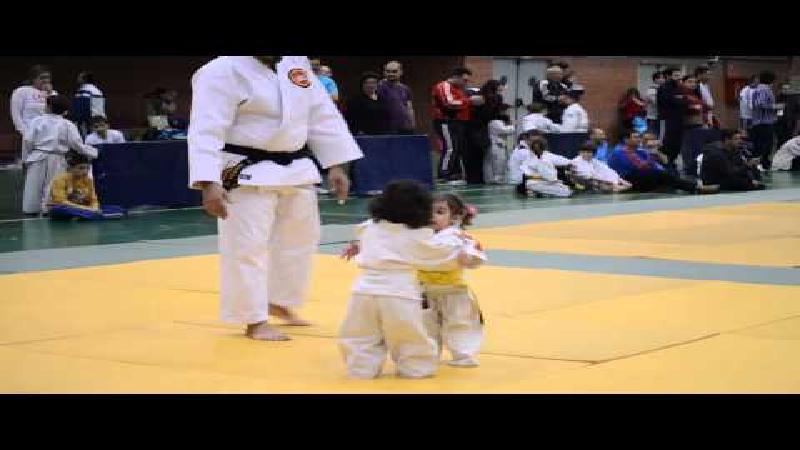 Het schattigste judokamp ooit