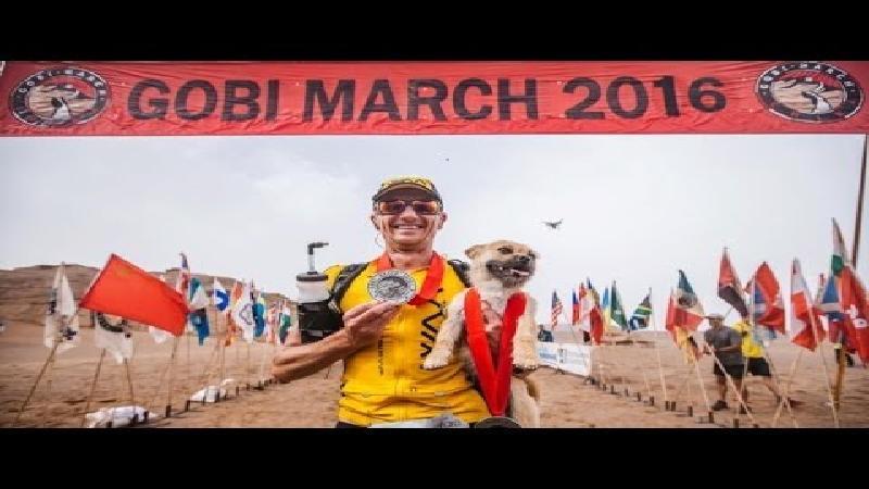 Pakkend verhaal: hondje volgt ultraloper 125 kilometer lang