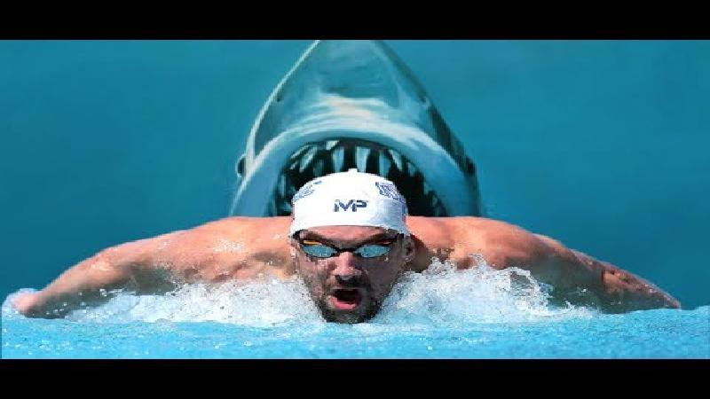 Witte haai vs Phelps: 1-0! (VIDEO)