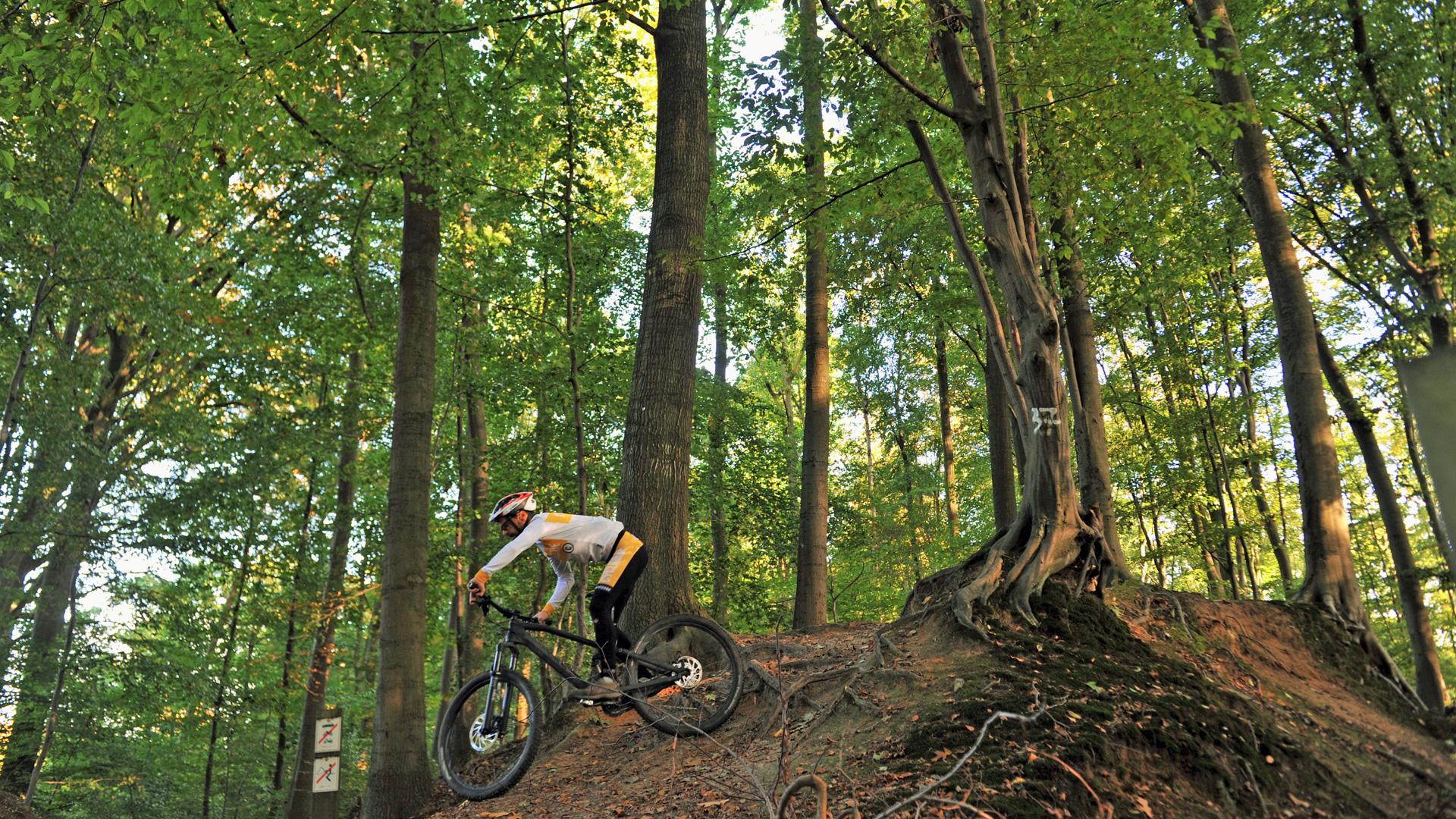 Afbeeldingsresultaat voor mountainbike heuvelland
