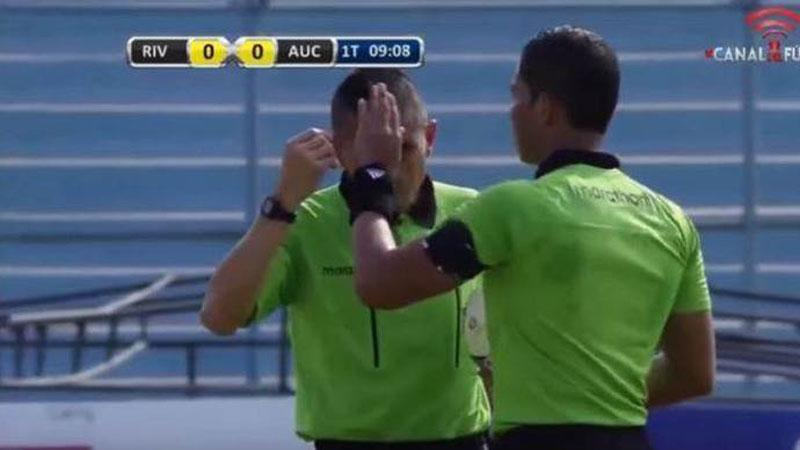 Agressieve wespen maken einde aan voetbalmatch (VIDEO)