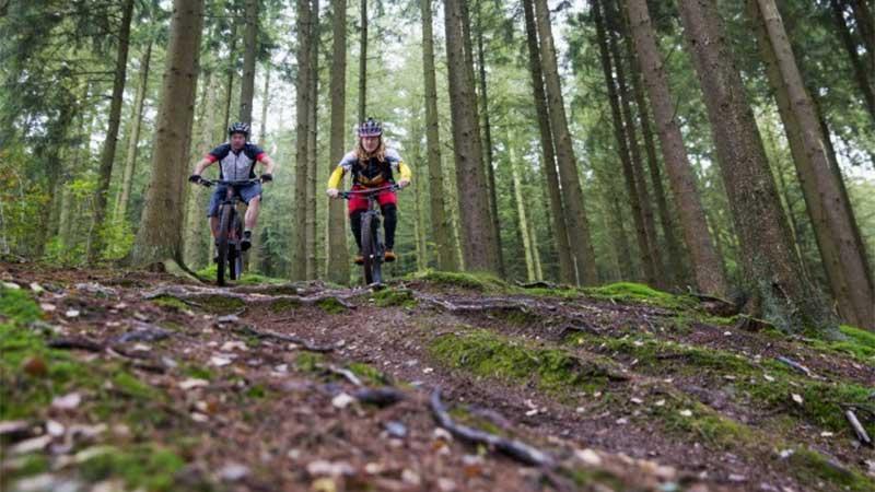 Paradijs voor mountainbikers bij Hechtel