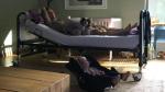 Bakelants herstelt thuis met hond, dochtertje en Bumba