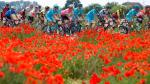 'The Great War Remembrance Race' maakt in 2018 zijn debuut