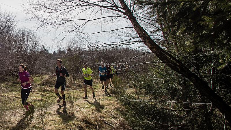 Trainingstips voor een trail van 32 kilometer
