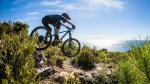 Canyon stelt nieuwe, grotere Strive voor op Velofollies