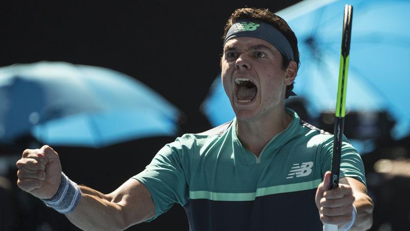 Novak Djokovic, la preuve par sept — Open d'Australie
