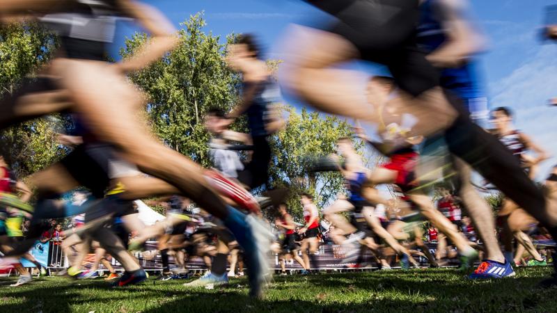 CrossCup 2019-2020 start in Berlare