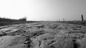 Paris Roubaix Challenge: ambiance