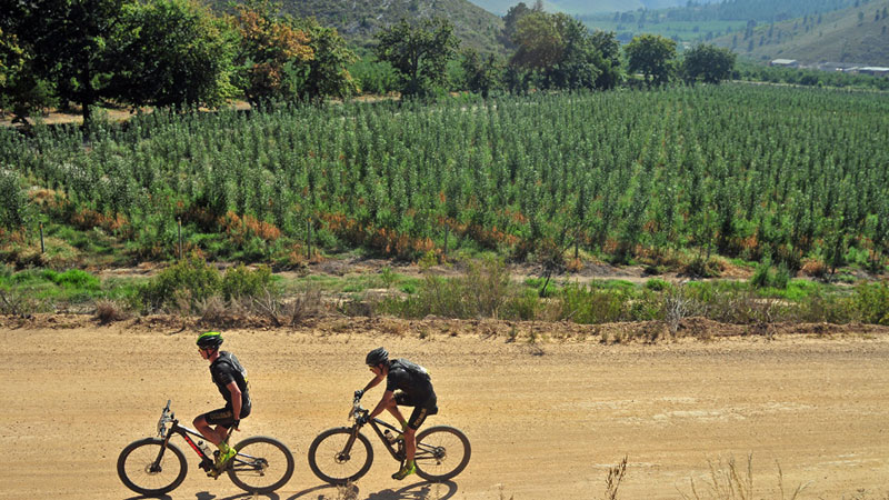 Sven & Sven - Cape Epic: part 6