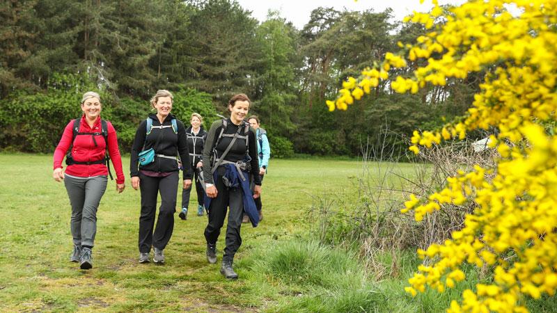 Runners' Lab Abdijentocht 2021 (walk)